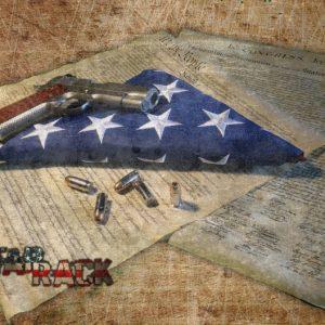 constitution-picture-705x528